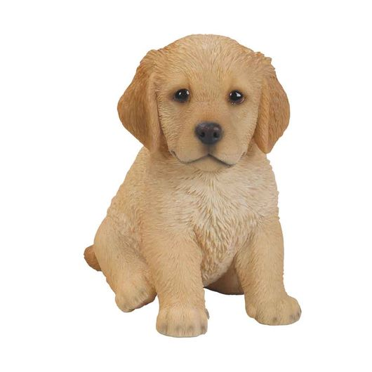 Vivid Arts Golden Retriever Puppy Pp-Gr03-F