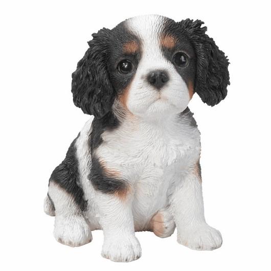 Vivid Arts King Charles Puppy Pp-Kcsp-F