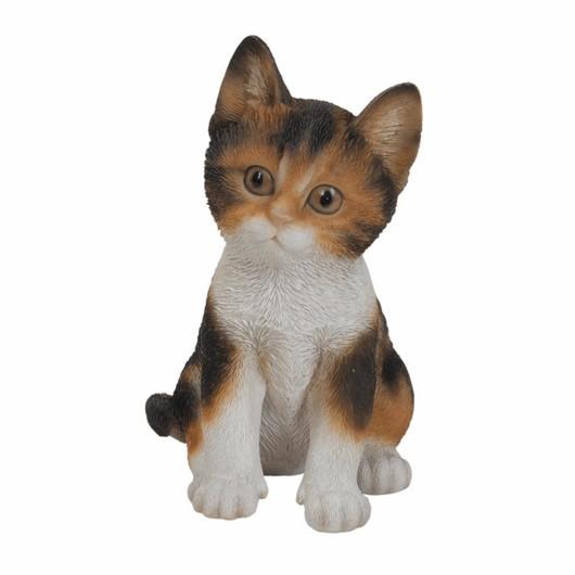 Vivid Arts Kitten Asst - Pp-Kt31-F