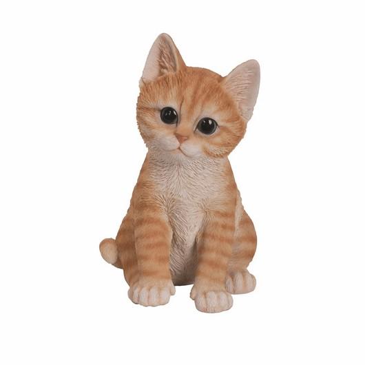 Vivid Arts Kitten Ginger F - Pp-Kt37-F