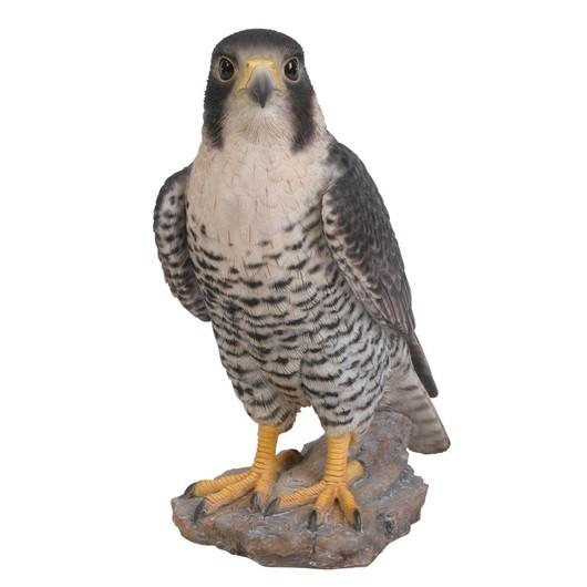 Vivid Arts Peregrine Falcon Xrl-Pfal-B