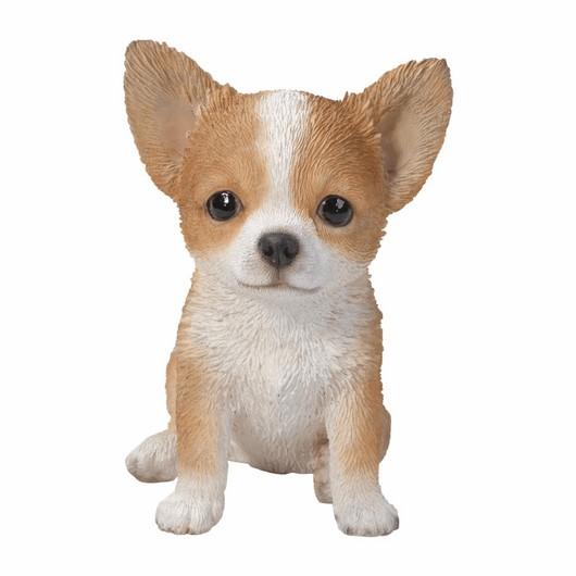 Vivid Arts Pet Pal Chihuahua Brown-White Pp-Huah-F