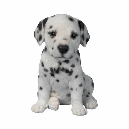 Vivid Arts Pet Pal Dalmation Puppy F Pp-Dalm-F