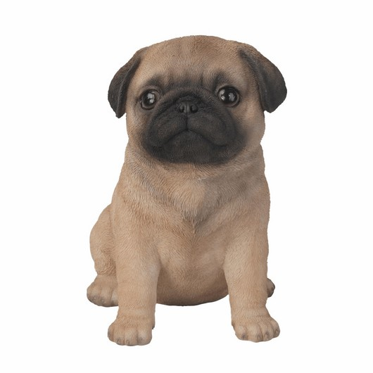 Vivid Arts Pet Pal Pug Puppy F Pp-Pugg-F