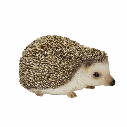 Vivid Arts Pygmy Hedgehog F Pp-Phed-F