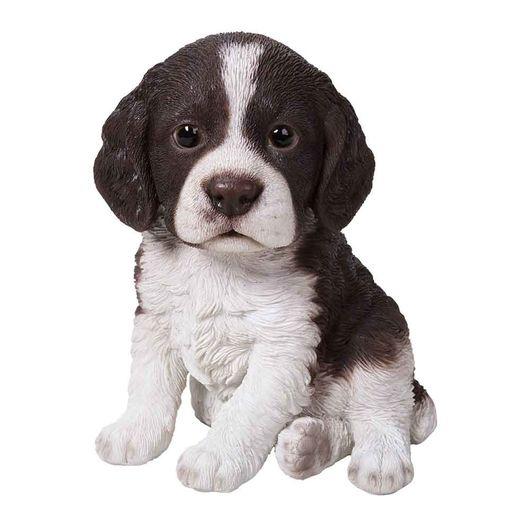 Vivid Arts Springer Spaniel Puppy Pp-Spsp-F