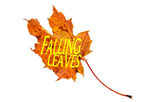 Falling Leaves Rough Ride