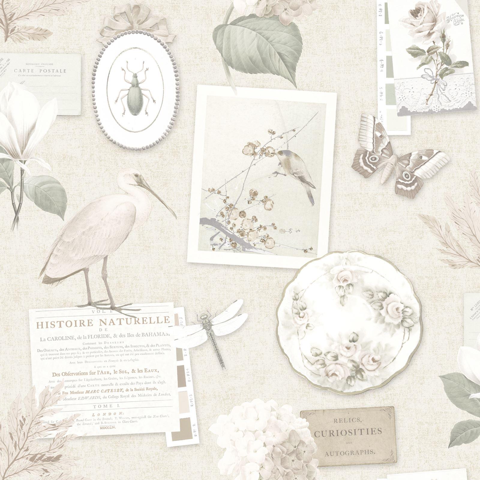 Shabby Chic Blumen Tapete In Verschiedenen Designs Wand
