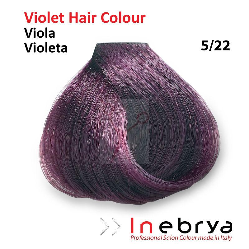 inebrya professionnel coloration de cheveux permanente teinture violet couleurs ebay. Black Bedroom Furniture Sets. Home Design Ideas