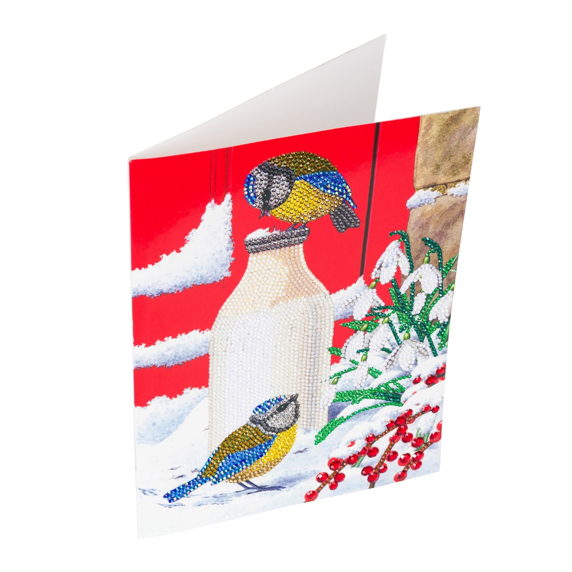craft buddy diy giant 29cm x 21cm crystal art card kit