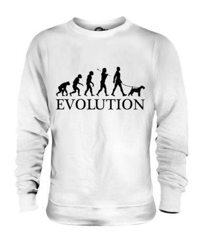 WHEATEN TERRIER EVOLUTION OF MAN UNISEX SWEATER  Herren Damenschuhe LADIES DOG LOVER