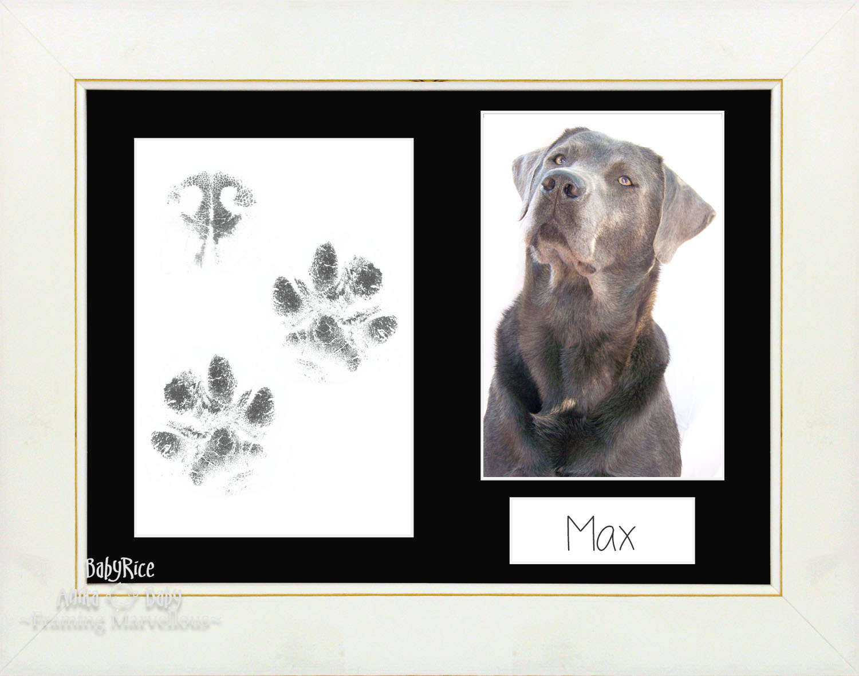 Pet Dog Paw Prints Print Kit with White Wash Frame Choice of Mount ...