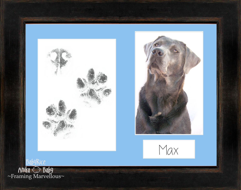 Pet paw prints print kit with black orange frame choice of mount pet paw prints print kit with black orange jeuxipadfo Images