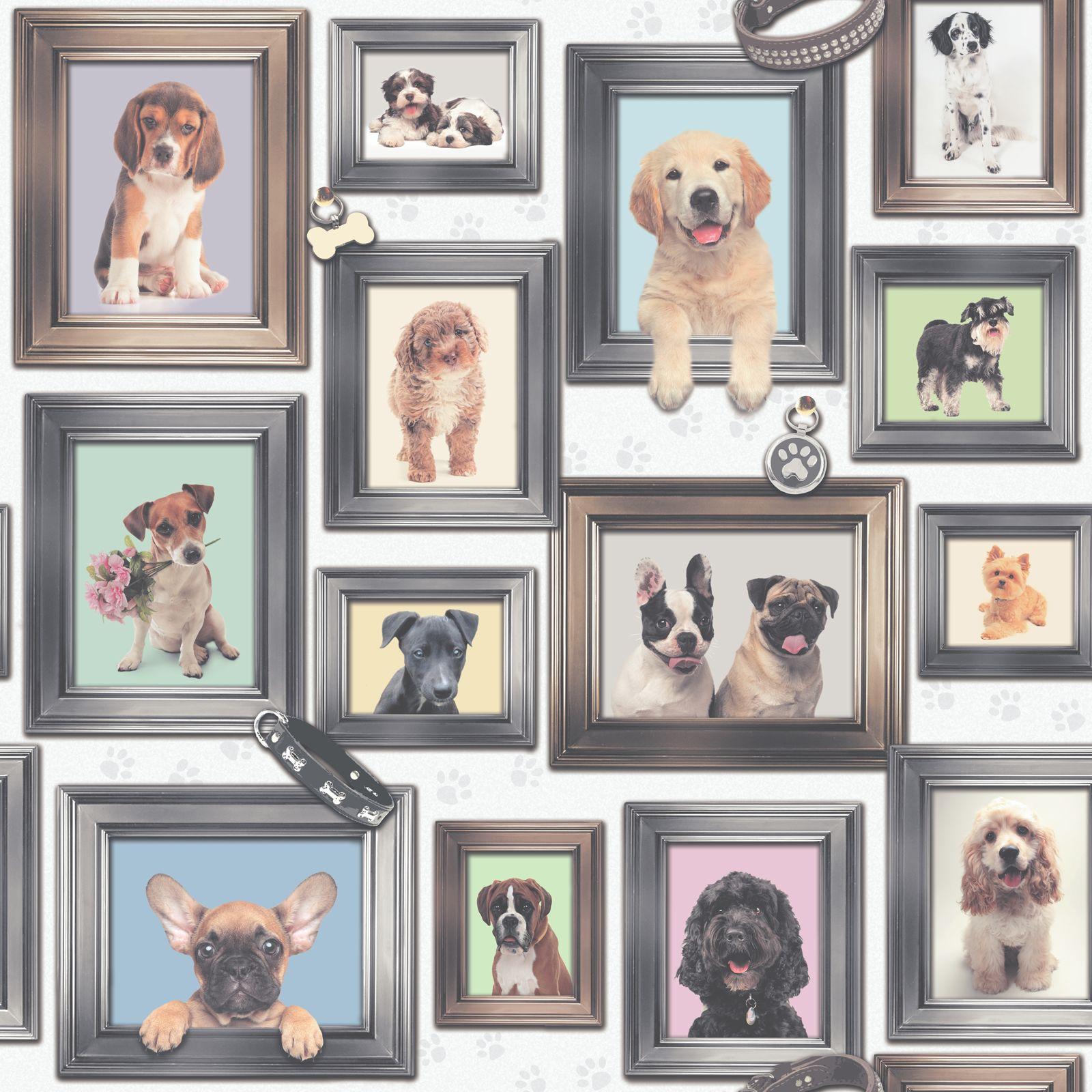 Hunde In Rahmen Tapete Welpe Love By Rasch 272703 | eBay