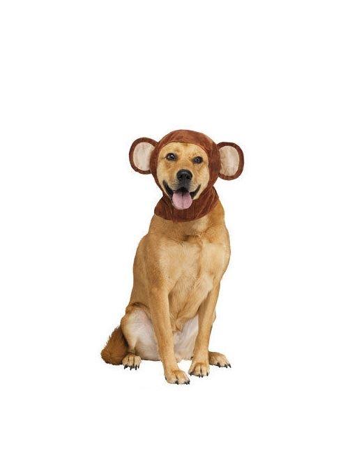 haustier hund halloween lustige neuheit tier kost m kost m. Black Bedroom Furniture Sets. Home Design Ideas