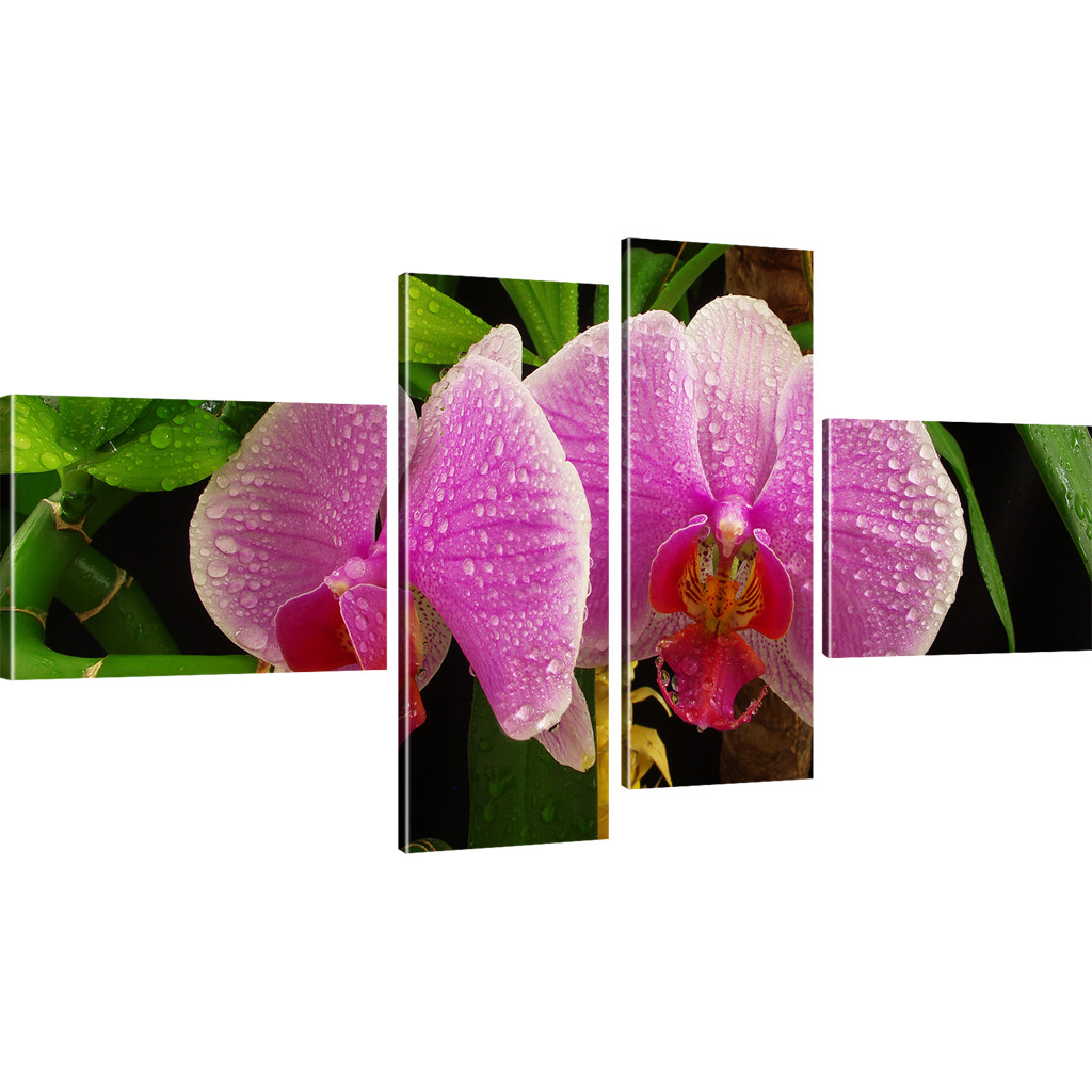 photo orchid e peintures murales fleurs tableau sur toile reproduction ebay. Black Bedroom Furniture Sets. Home Design Ideas