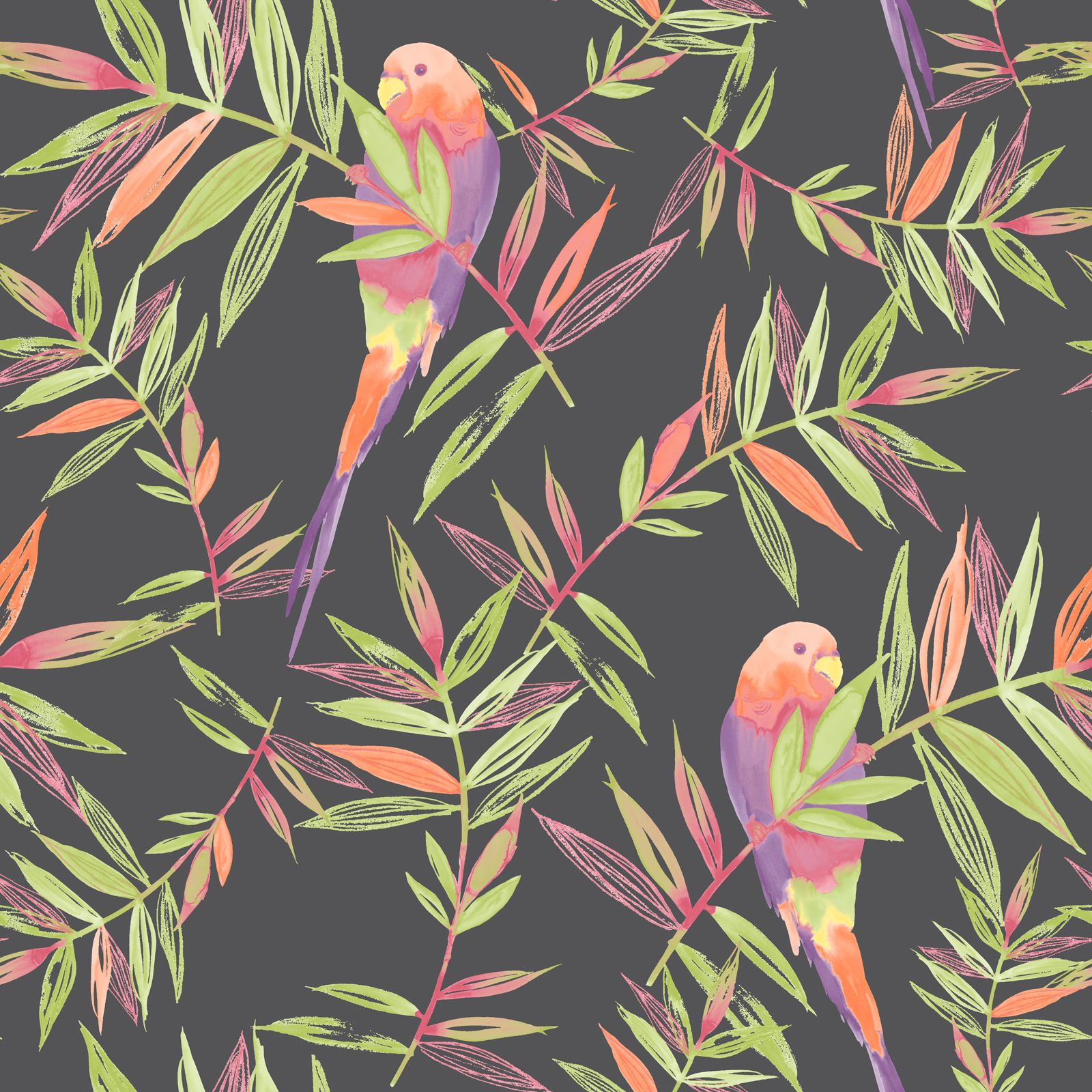 wallpaper tropical birds and foliage - photo #3
