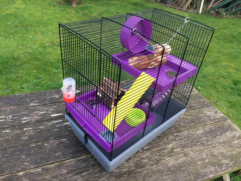 Hamster cage with toys and bedding materials in ventnor for Waste material items useful