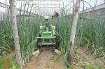 Le robot Oz soulage le semencier