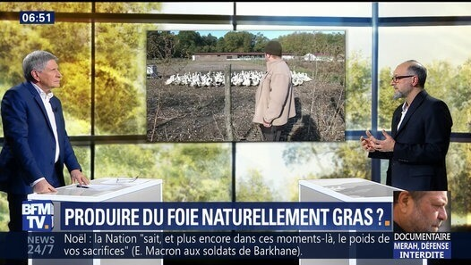 Un procédé de recherche pour produire du foie naturellement gras par BFMTV - Dailymotion