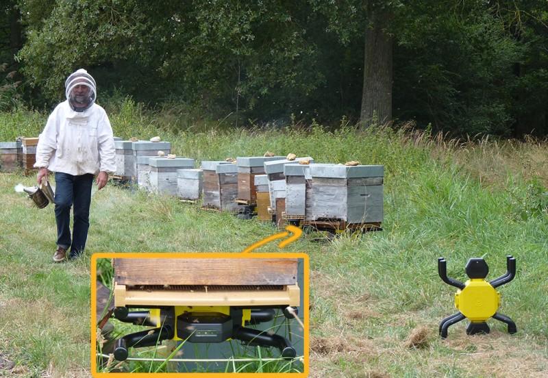 La ferme apicole connectée
