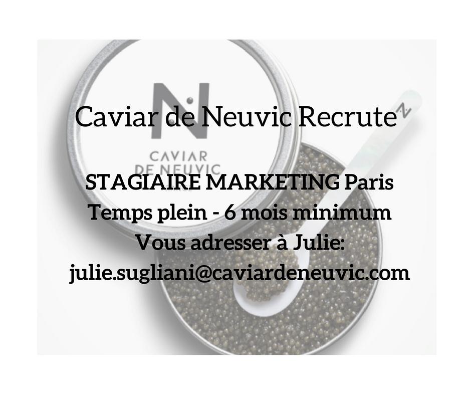 Nous recrutons d'urgence une stagiaire Marketing, basée à Paris 6ème