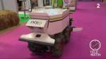 Un robot de désherbage pour aider les agriculteurs