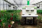 [Ces startups qui changent le monde] Naïo Technologies conçoit les robots qui assistent les agriculteurs