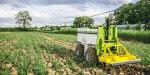 Le pôle Agri Sud-Ouest Innovation veut développer