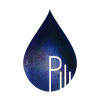 PILI currently funding sur WiSEED