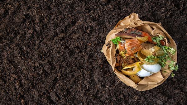 Les biodéchets composent 30% des poubelles : sauvons-les pour créer un terreau 100% français et naturel !
