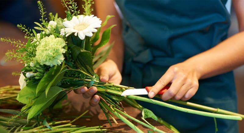 Les fleuristes produisent 100L de déchets verts par jour : nous les leur collectons pour les transformer en terreau... et ils revendent ce terreau à leurs clients. Une boucle complète et gagnant-gagnant !