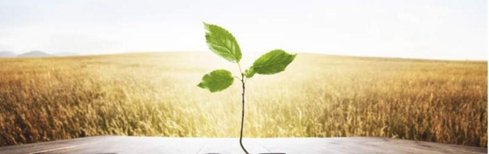 Energie et économie collaborative : les bouleversements à venir