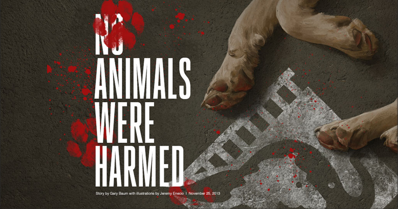 Animals were harmed