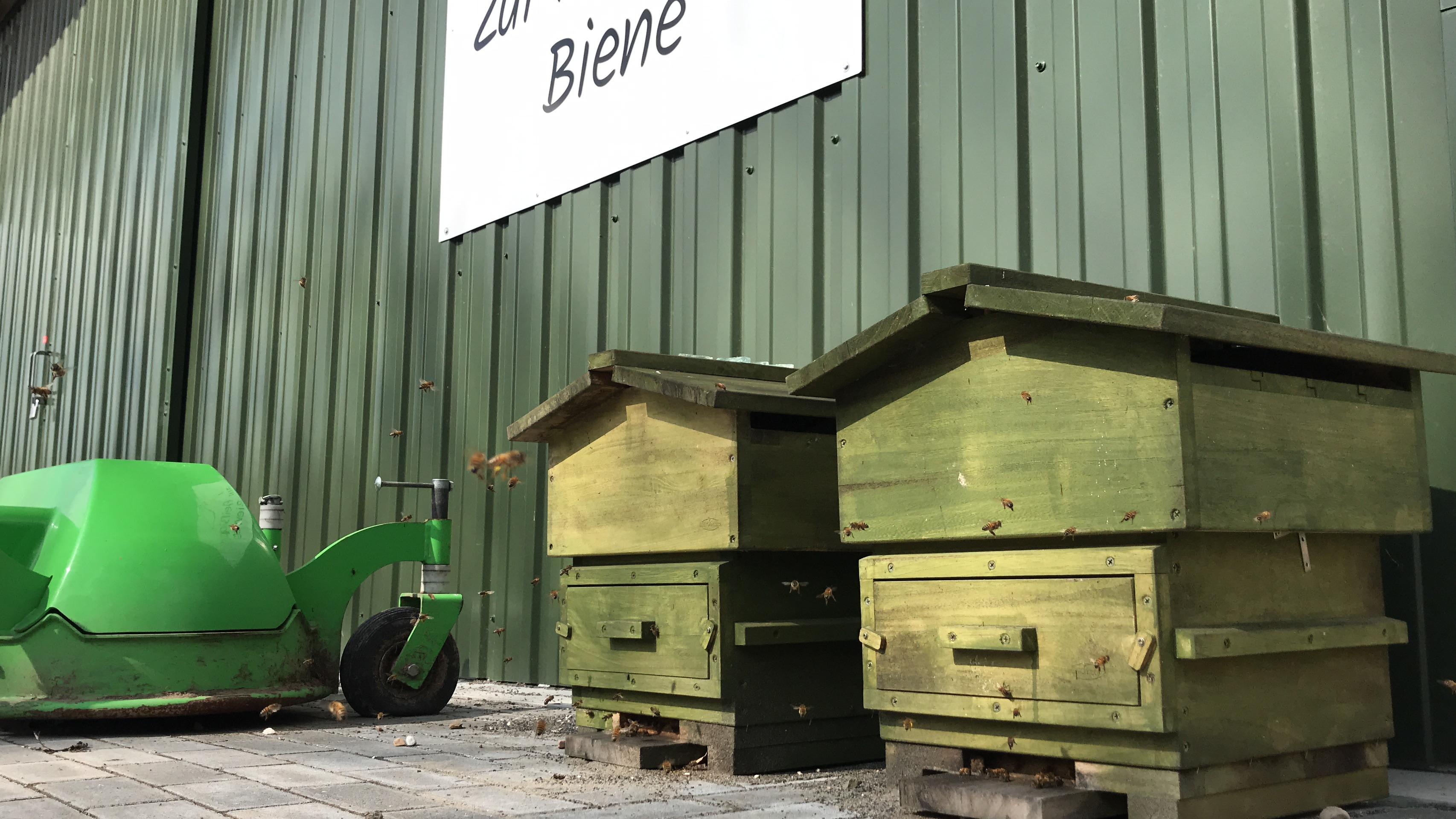 Foto 2 von Imkerei zur fleißigen Biene