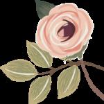 flower div