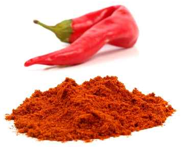 Chillies: From Mexican to Indian, Our Chilli Tips!