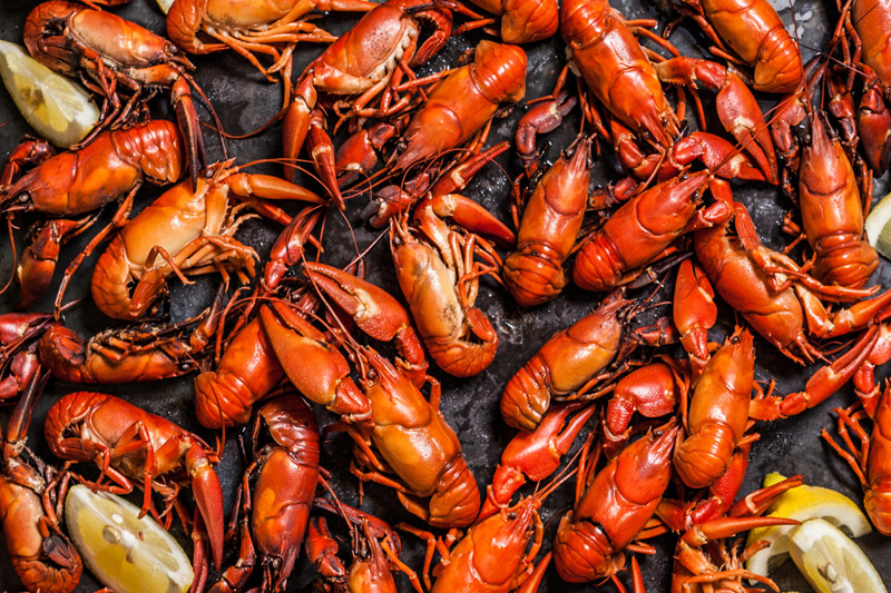 x.Blues kitchen crawfish boil