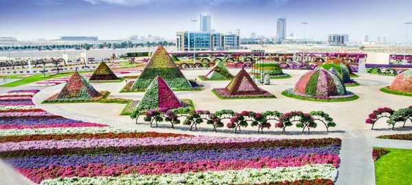 Dubai miracle gardens things to do dubai 73 600 270