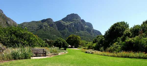 Kirstenbosch botanical gardens things to do cape town 111 600 270