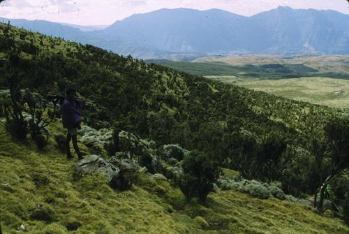 Photo of Simien Mountains National Park in the TripHappy travel guide