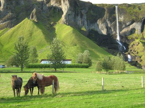 Photo of Kirkjubæjarklaustur in the TripHappy travel guide