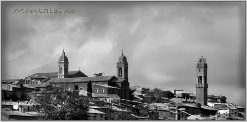 Photo of Montalcino in the TripHappy travel guide