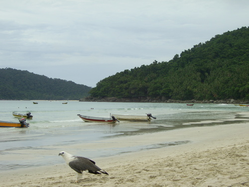 Featured medium photo of Pulau Perhentian Kecil on TripHappy's travel guide