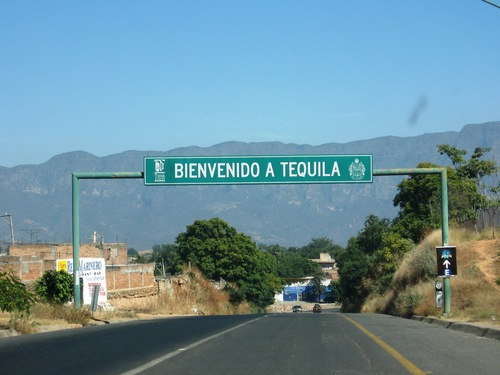 Photo of Tequila in the TripHappy travel guide