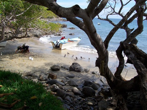 Featured medium photo of Hotel Playa Escondida on TripHappy's travel guide