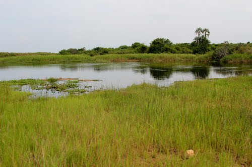 Photo of Akagera National Park in the TripHappy travel guide