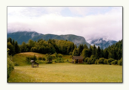 Photo of Municipality of Bohinj in the TripHappy travel guide