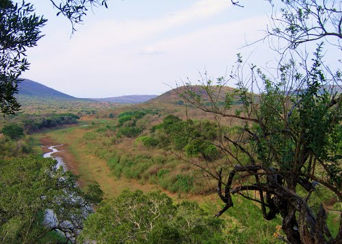 Photo of Biyamiti Bushveld Camp in the TripHappy travel guide