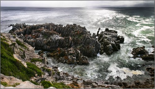 Photo of Gansbaai in the TripHappy travel guide